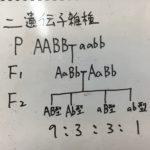 遺伝 公務員試験
